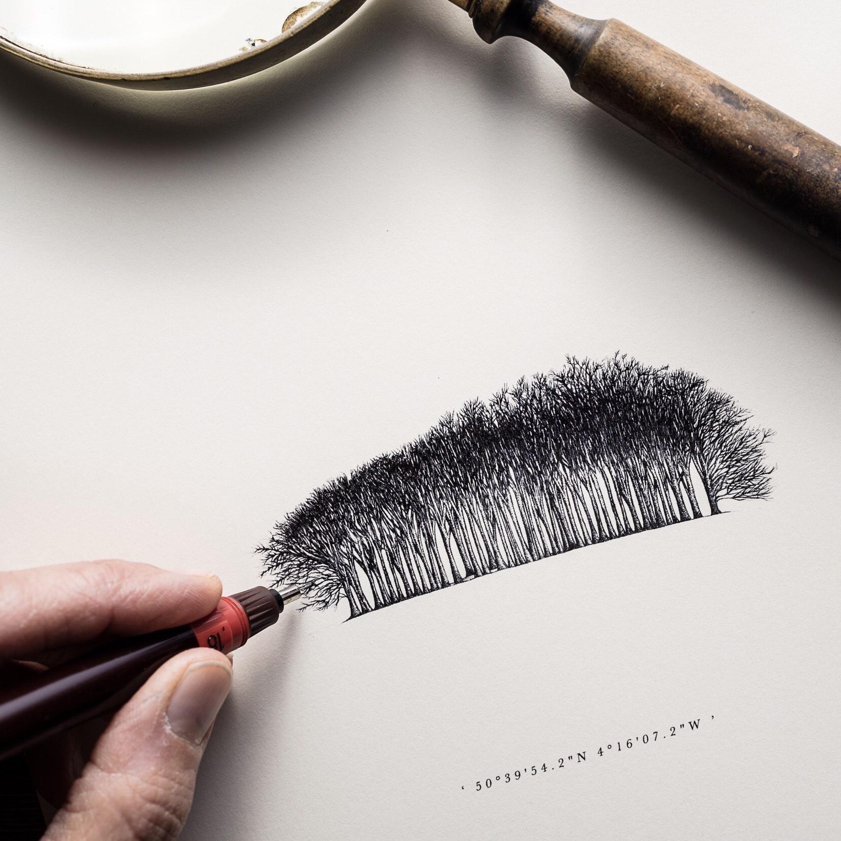 Cornish Copse | Being Drawn | Close Up
