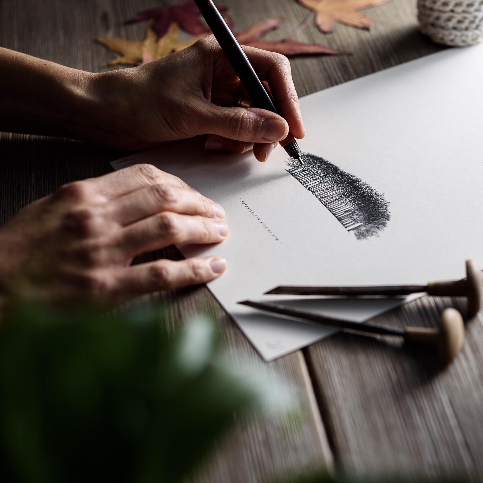 Cornish Copse | Being drawn 2
