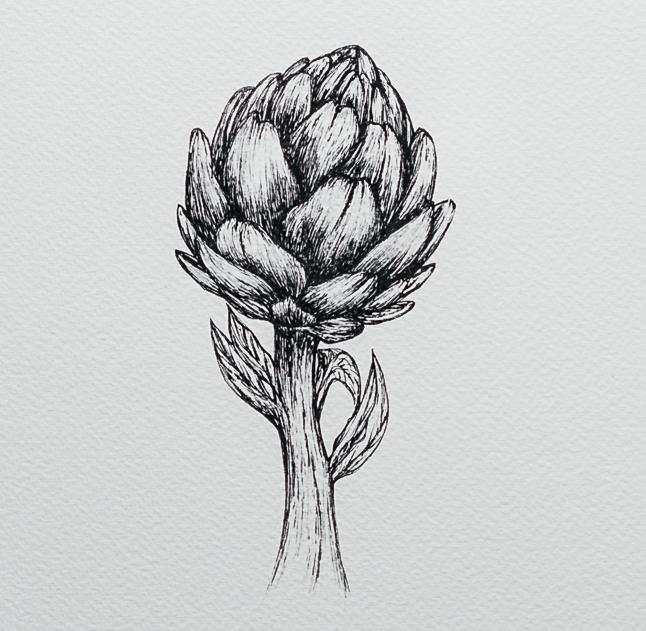 Artichoke | Detail 2