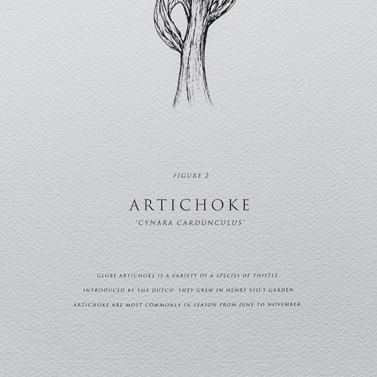 Artichoke | Detail