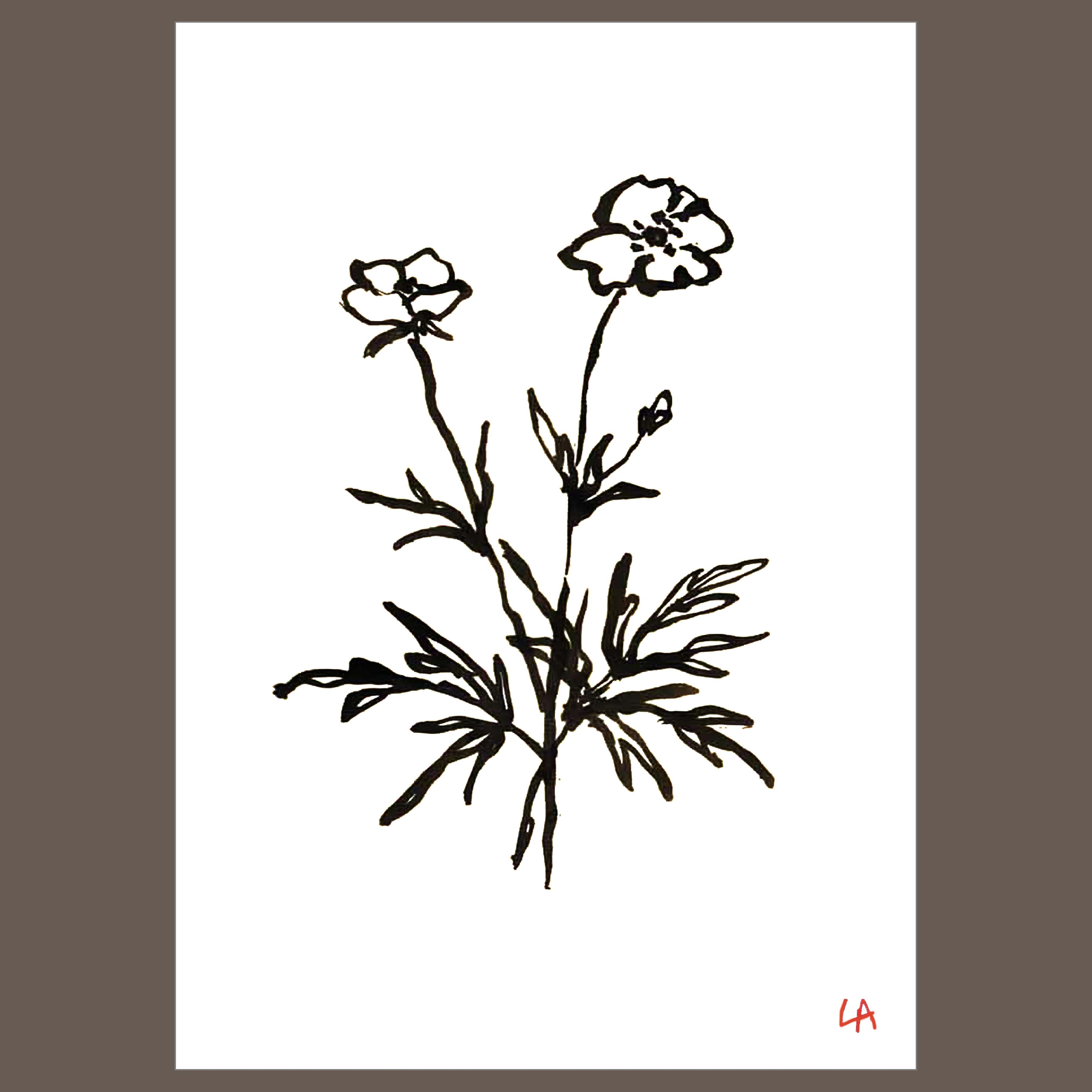 WildflowerThree